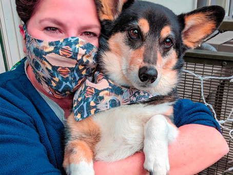 Fun Food-Based Activities You Can Do with Your Dog During Quarantine