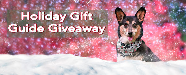 BB_gift guide giveaway.jpg