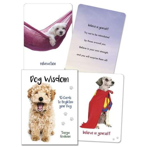 dog wisdom cards, inspiration, dog wisdom