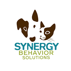 synergy behavior solutions.png