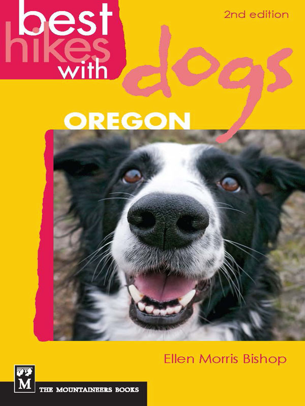 hiking, dogs, best hikes, hiking in oregon, oregon, dog activities