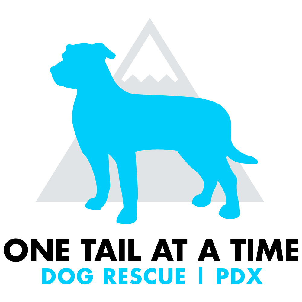 dog rescue, dog charity, dog non-profit,