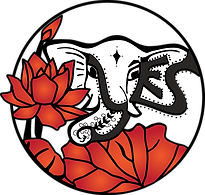 YES Logo Transparent.png