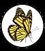 Schmetterling gelb_einzeln_Rahmen.png