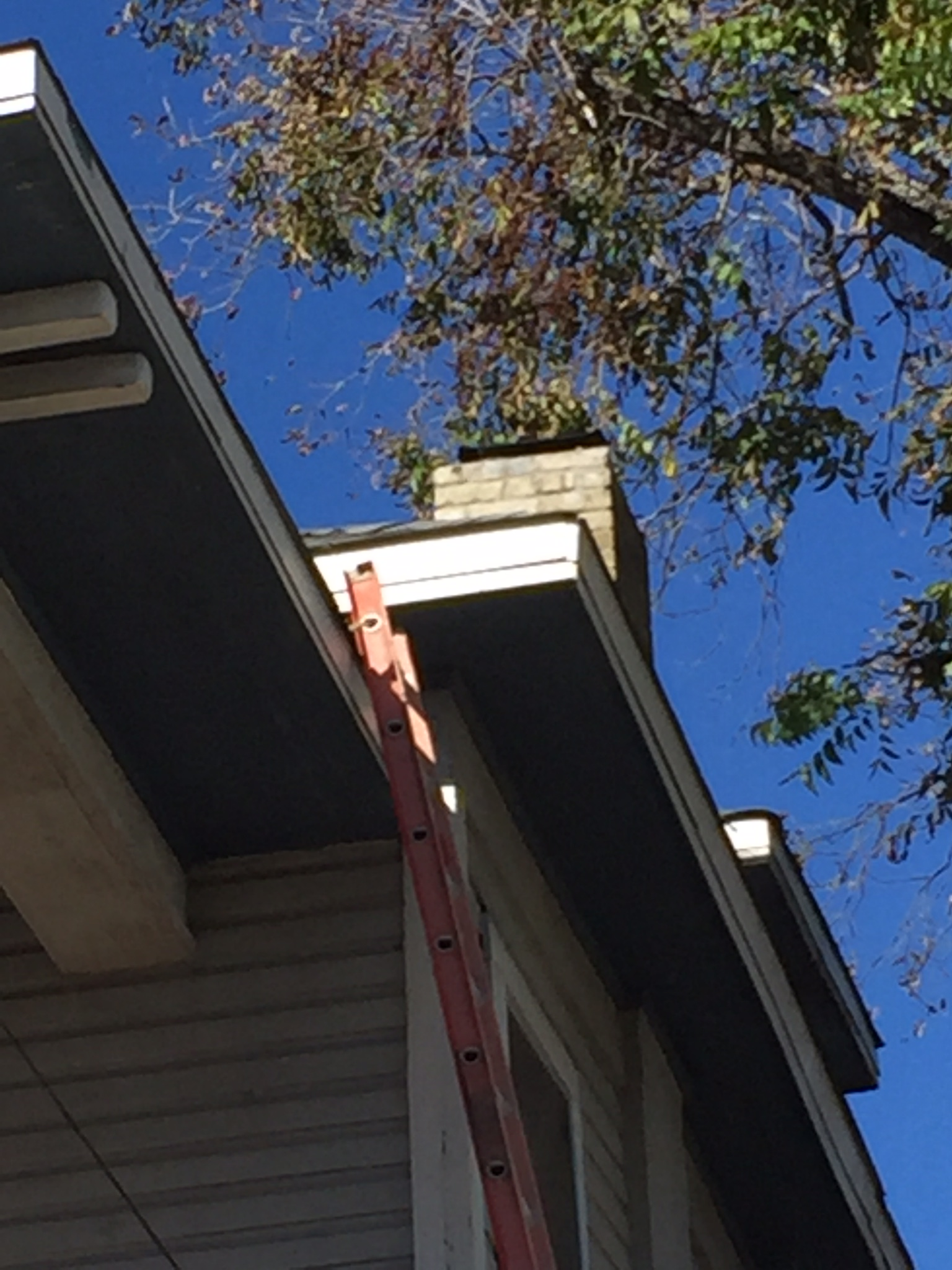 Brick Repair-0016