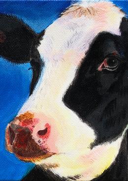 Blue Cow, Farm Animal Series