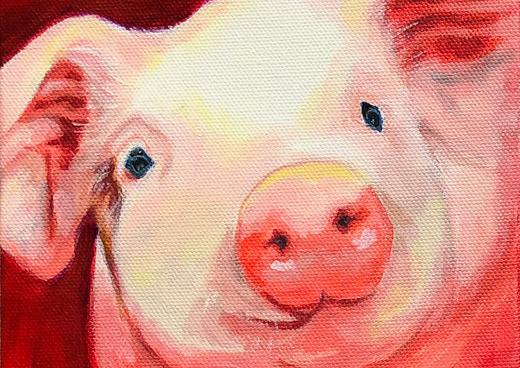 Red Pig, Farm Animal Series