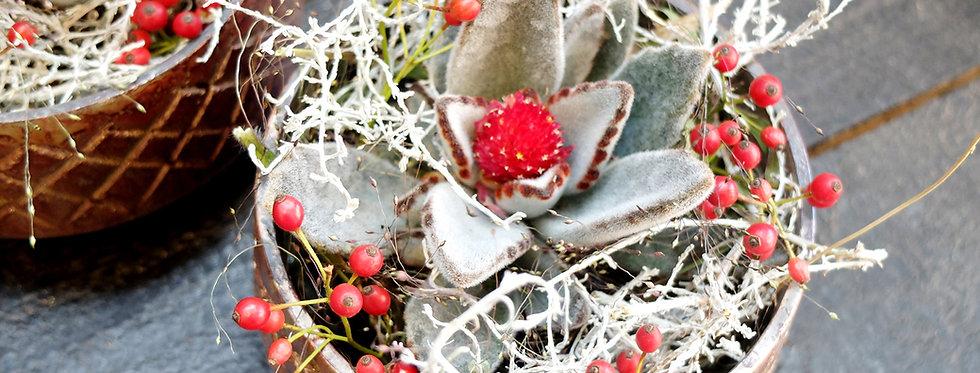 Blumengruß Überraschungsabo