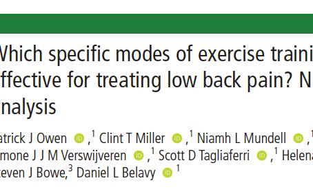 Quais os exercícios mais efetivos para a dor lombar crónica?