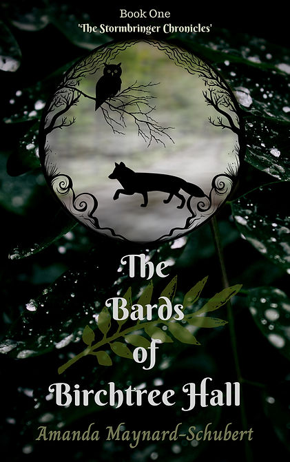 Bards Birchtree Hall Book 1 Stormbringer