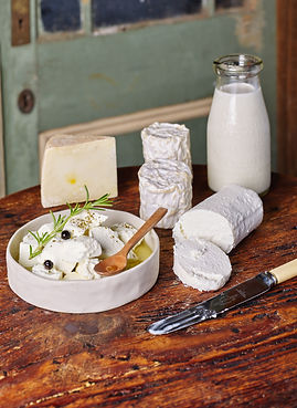 Tolpuddle Cheese34752-1.jpg