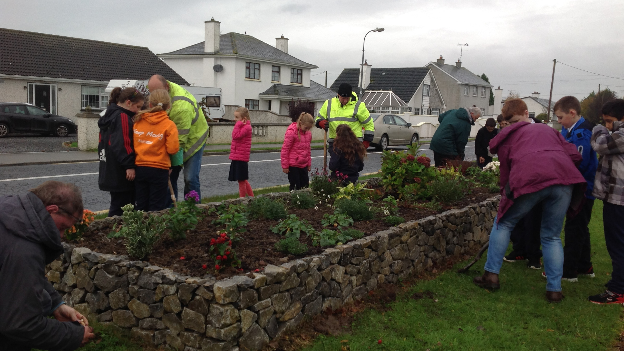 Tidy Town Planting 2017 (7)