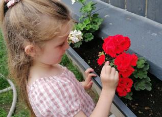 Budding Gardeners...