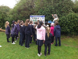 Exploring Science Outdoors