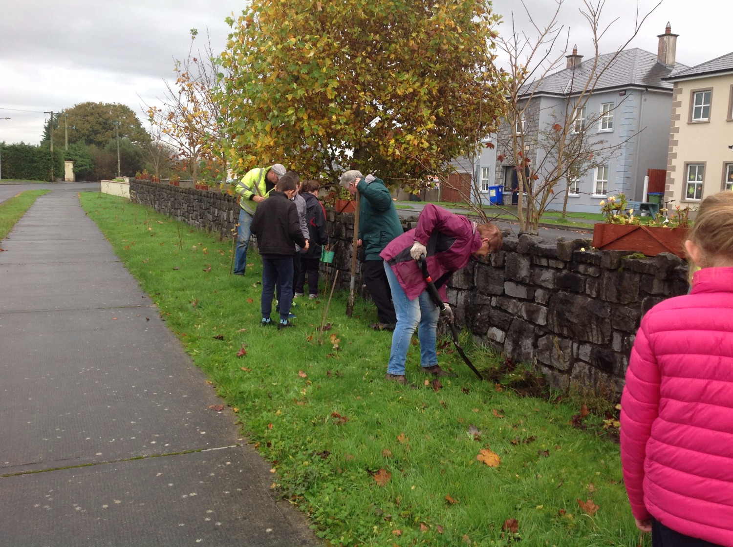 Tidy Town Planting 2017 (2)_edited