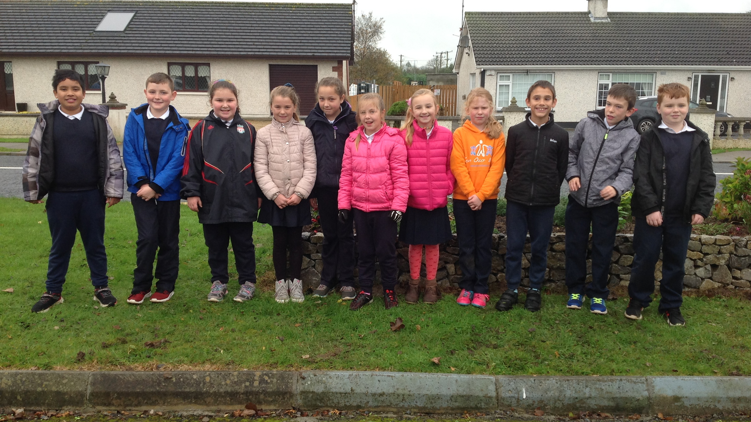 Tidy Town Planting 2017 (9)