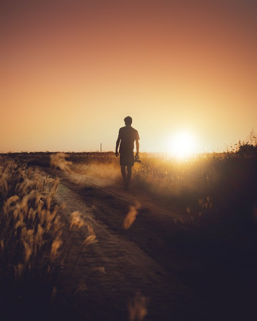 Silhouette of man walking through fields with sunset
