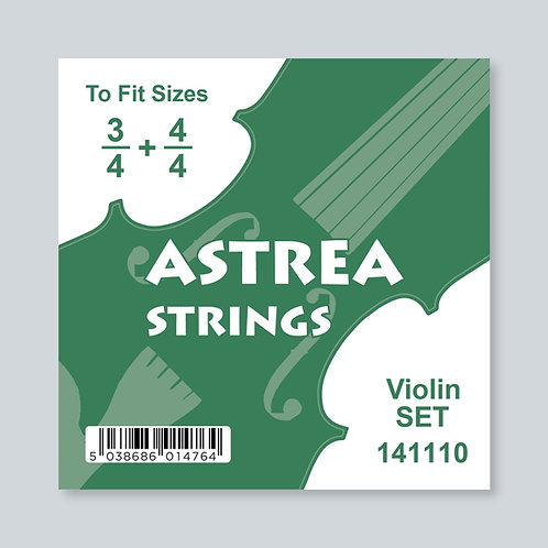 3/4 - 4/4 Size Violin Set