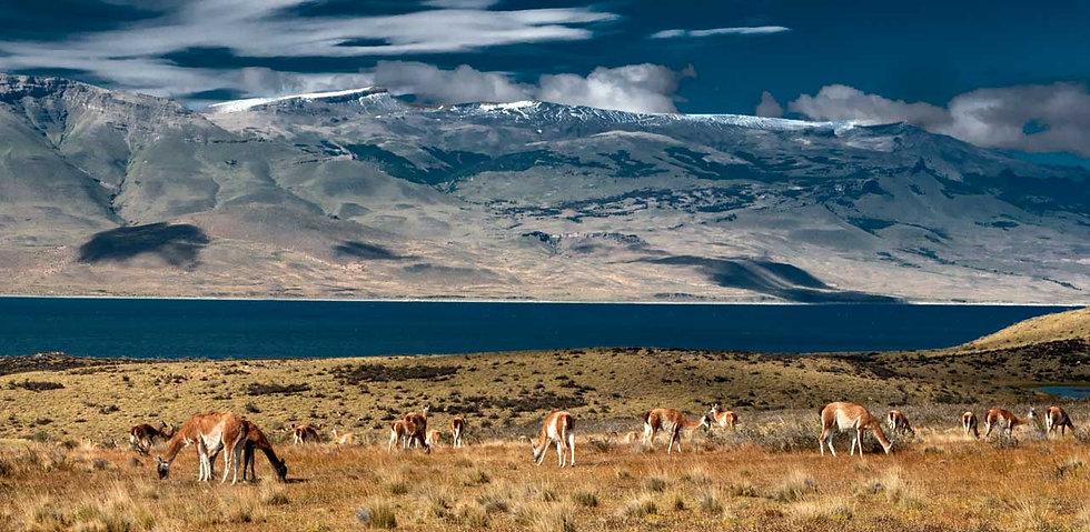 Fauna Sierra del Toro