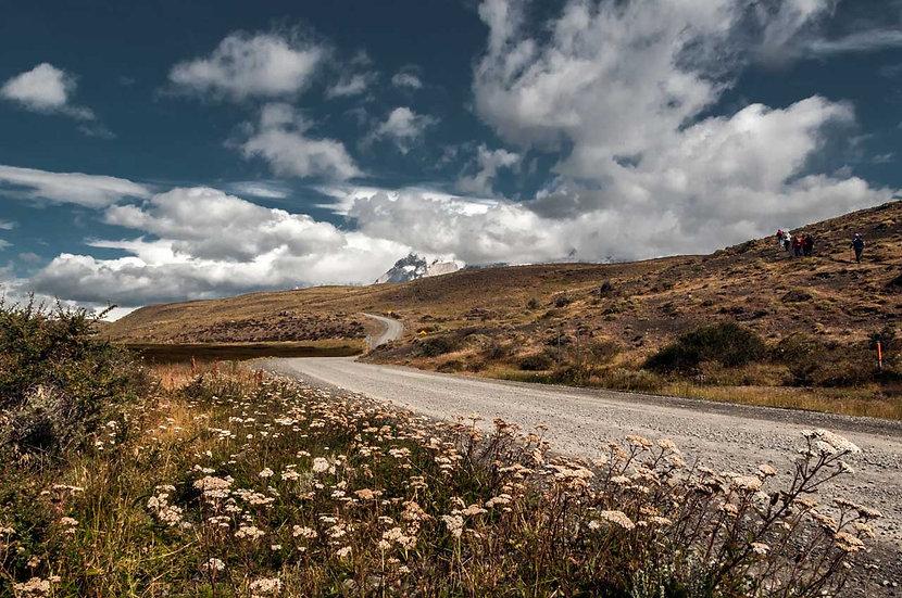 Camino a Las Torres