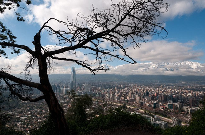 El Arbol y Santiago