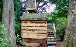 Tyler Arboretum Treehouse