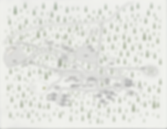 Camp Map 4k.jpg.png
