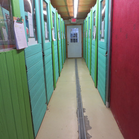 Our boarding rooms