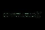 logo MAXFACTOR-01.png
