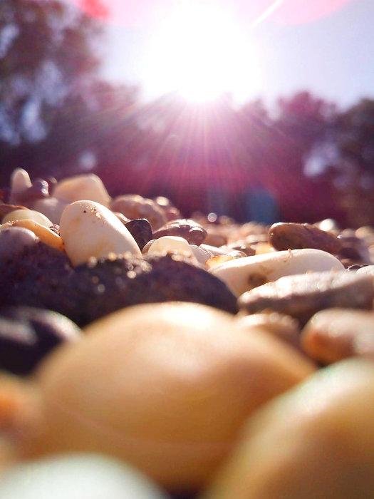 sitephoto_17_edited_edited_edited.jpg