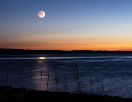 Moonlight-web.jpg