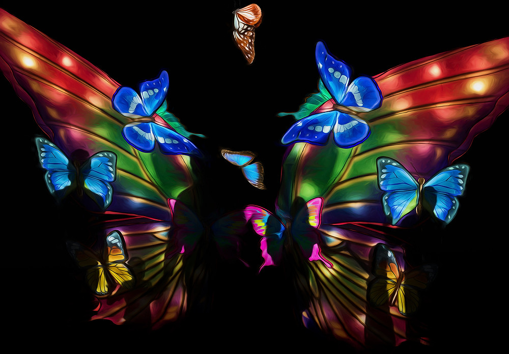 Chinese lantern festival  L.A. Creative photography