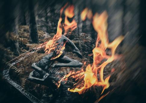 3T8R8402-fire.jpg