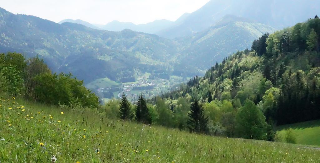 obersberg