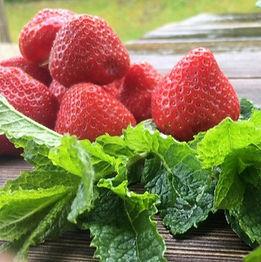 Erdbeere%207%20(2)_edited.jpg