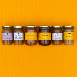 All Honey on Yellow-01