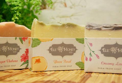 Illustrated Soap Box Design