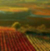 rioja-spain-vinamericas.jpg