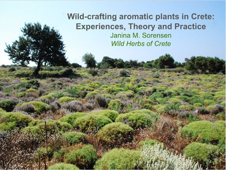 Wild-crafting aromatic plants in Crete: Experiences, Theory and Practice
