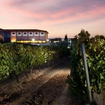 manzanos_winery.jpg