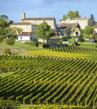 bordeaux_vineyards_web.jpg