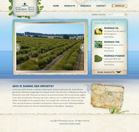 Health Product Imports Website Design