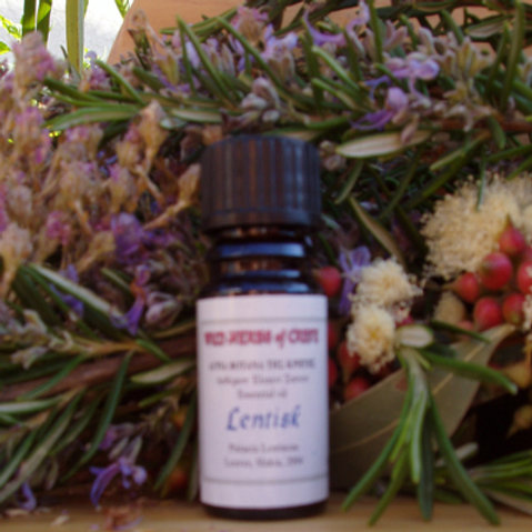 Lentisk / Mastic Essential Oil