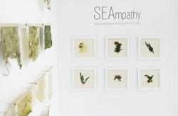 SEAmpathy-Mayma