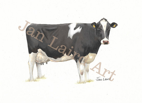 Black & White Holstein Side View (unframed)