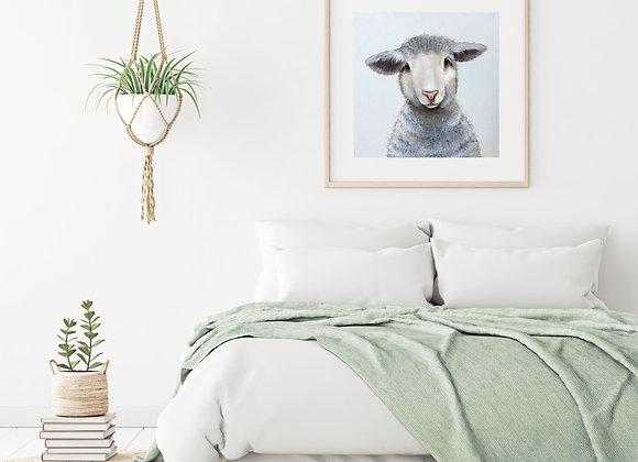 Wool I am