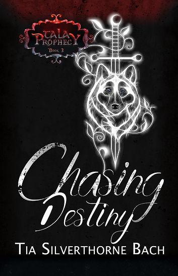 ChasingDestiny_New_SFW_ebook.jpg