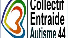 Pourquoi un Collectif d'entraide et pas un GEM Autisme dans l'immédiat ?