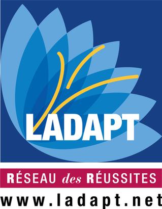 Le Réseau des Réussites, la force bénévole de LADAPT