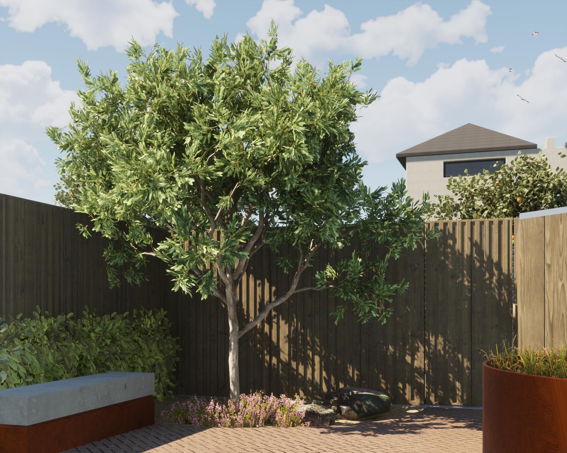 1900_Backyard.png